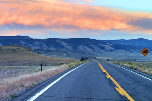 SUCAP Road Runner long road
